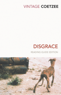 Book cover image for Disgrace