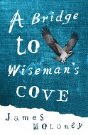 Book cover image for A Bridge to Wiseman's Cove