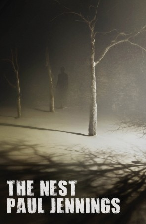 Book cover image for The Nest