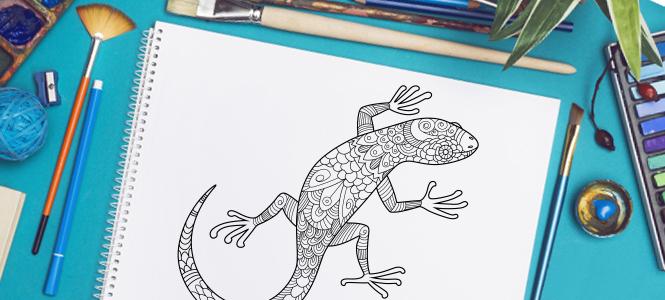 2018 NAIDOC Week colouring competition! - Reading Australia